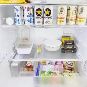 1/18の嘆 ギュウギュウの頃には戻りたくない。ガラーン冷蔵庫を作るには。