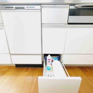 掃除にこだわりなき我が家ゆえの洗剤コーナー