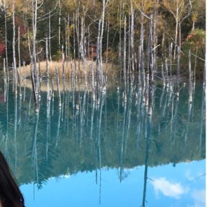 青い池とモラ王。