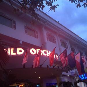 ~ワイルド オーキッド リゾート (Wild Orchid Resort)~2019年8月 アンヘレス旅行記1日目(3)