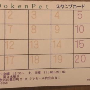 11月15日 いいインコの日 限定