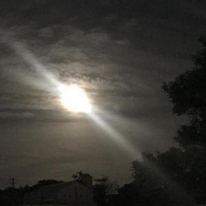 蠍座の満月♪