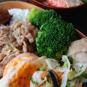 生姜焼き弁当と鮭弁当