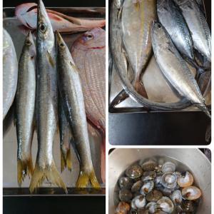 江の島の魚と夫料理