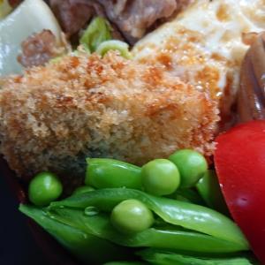 白菜の漬物と豚肉の炒め物弁当