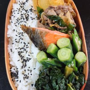 牛肉サラダと鮭の弁当
