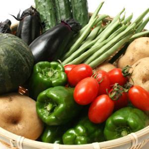肉体のメンテナンス〜食の安全(野菜)