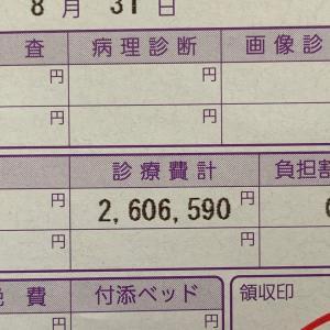 8月分の入院費