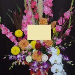 開店祝い 沖縄県の花屋アレンジマニア