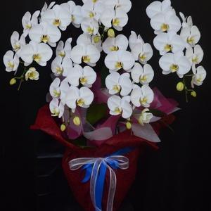 開店祝いの胡蝶蘭 沖縄県の花屋アレンジマニア