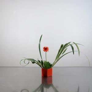 赤いガーベラ一本