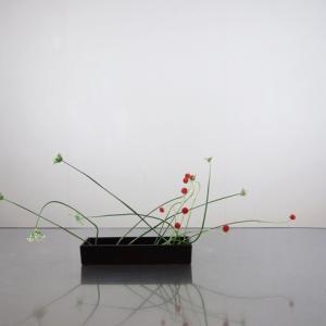 ニラの花とセンニチコウを、定番中のベーシック花器で暴れるように挿す