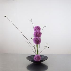 紫色のアリウムを、縦にトントンと並べて