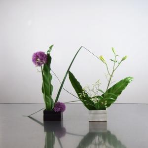 黒色白色2こ花器で、タニワタリを大きく広げて解放感