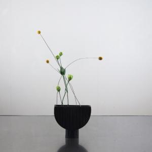 少ない花材で華奢な動き、庭のグラスペディアで、