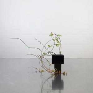 庭のラセイン&オウゴンカズラを、魅力的なスマホ大の花器で
