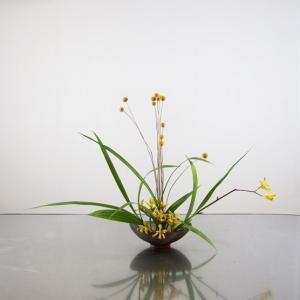 庭のシランの葉と、黄色系の花色を合わせて