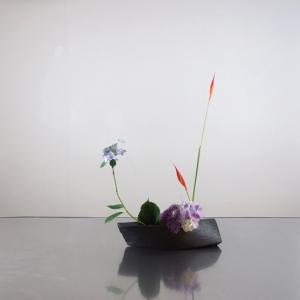 2種類の紫陽花に、ヘルコニア・アンドロメダ