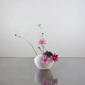 コスモス、開花と蕾を分けて挿す