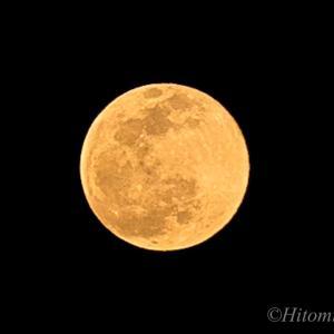 獅子座の満月に想いを寄せて☆