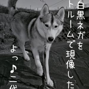 昔むかし (*^_^*)