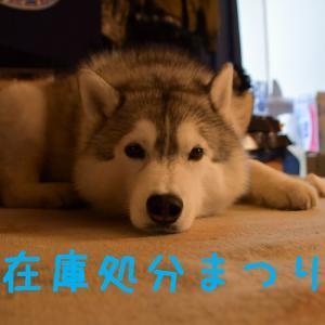 あああ、宮崎はきょうも雨だった~♪ (^_^;)