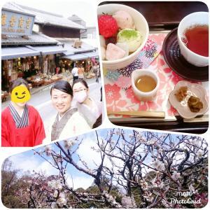 成田山梅祭り~花より団子~
