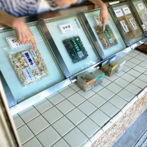 成沢商店(新潟県弥彦村)