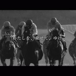 9/19(土)中山12Rの予想