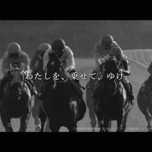 3/6(土)阪神10Rの予想