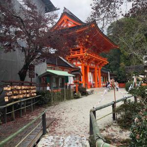☆かね庵☆上賀茂神社に行ってきました♪@庭楽育