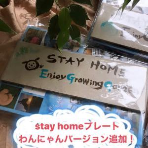 stay homeプレートプレゼント☆わんにゃんバージョン追加♪