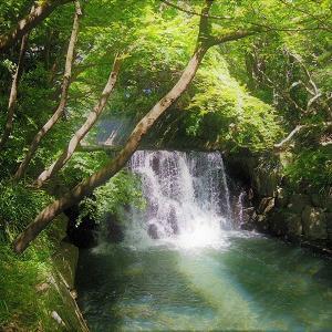 @戸塚 まさかの天然の滝だとは!