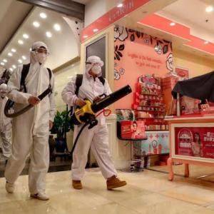 武漢の研究者達はコロナウィルス粒子を洞窟コウモリに放出を計画