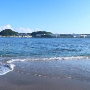 ふうちゃんと海に行ってきました②