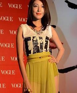 楊謹華(シェリル・ヤン)主演の「敗犬女王」と「鏡子森林」