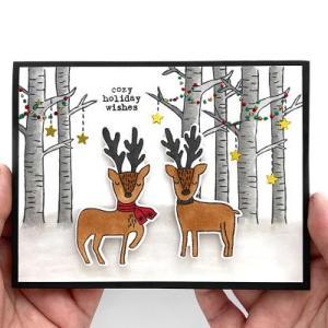 我が家からのクリスマスカード、2020年