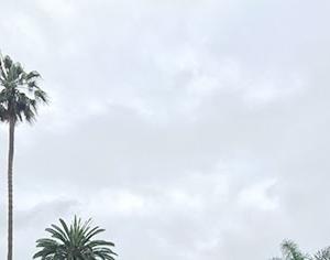 夏至の週末、サンディエゴ編