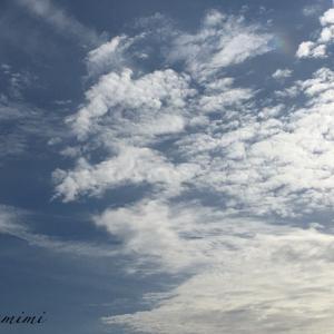 お空にアレがおるー。