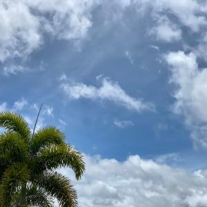 ハワイにハリケーン上陸か?