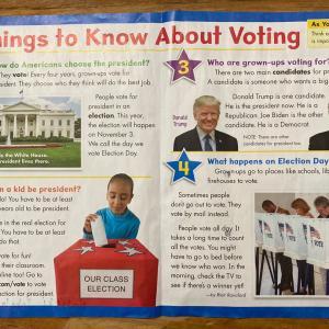 大統領選挙とマメ