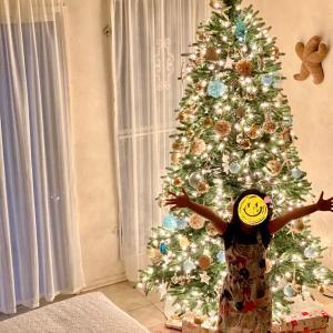 クリスマスツリー飾った〜