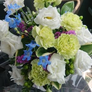ランちゃんに、お花有難うございますm(__)m。