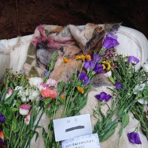 アド 埋葬しました。