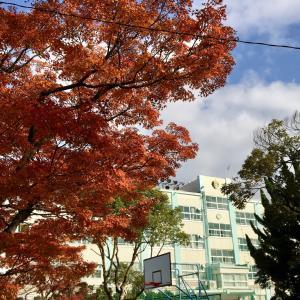 ★江戸川区の職業体験は中学1年生から準備しています