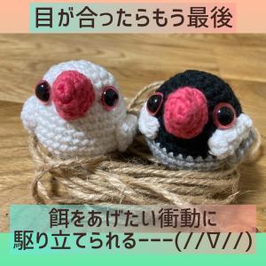 ★文鳥の編みぐるみ!お客様からのプレゼント♡