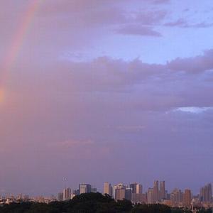 雷と虹と!