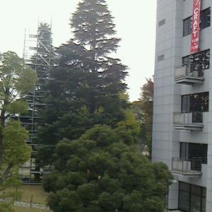 千葉工業大学津田沼祭開催