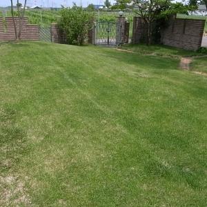 芝刈りと除草剤