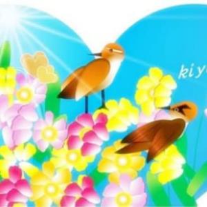 コスモス 鶲 小鳥